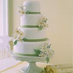 Ribbon Cake - Daisies